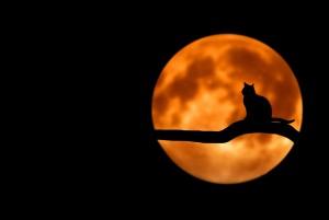 Hihetetlen együttállás - Péntek 13-án rendkívüli lesz a Hold