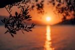 Napi Karmahoroszkóp május 29. péntek - Ideje, hogy megtaláld az egészséges egyensúlyt munka és pihenés között.